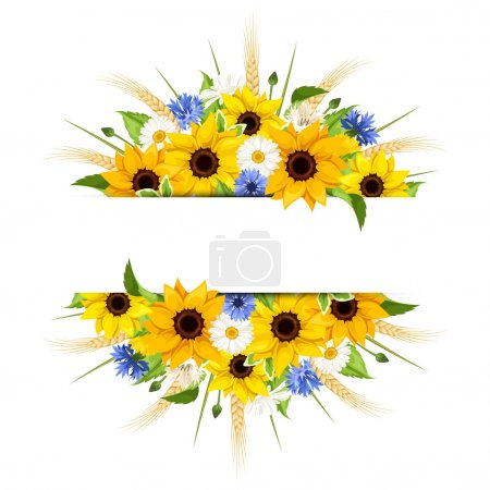 Illustration for Vector background of sunflowers, daisies, cornflowers, ears of wheat and leaves isolated on a white background. - Royalty Free Image