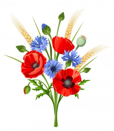 Illustration for Vector bouquet of red poppy flowers, blue cornflowers and ears of wheat isolated on a white background. - Royalty Free Image
