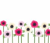 Vector horizontal seamless background with pink purple and white anemone flowers