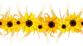 Horizontal seamless background with sunflowers and ears of wheat Vector illustration