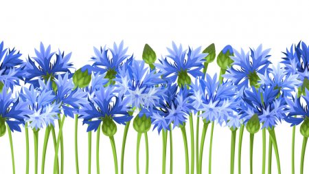 Illustration for Vector horizontal seamless background with blue cornflowers. - Royalty Free Image
