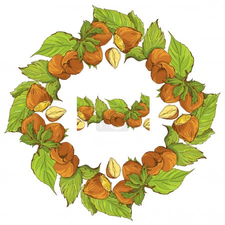 Circle ornament with highly detailed hand drawn hazelnuts isolat