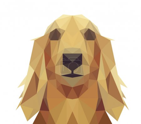 Illustration for Low Poly Geometric Dog Design - Long Hair Dachshund, Golden Retriever or Saluki - Royalty Free Image