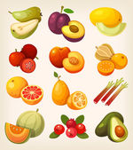 Exotic tropical garden and field fruit Icons for labels and packages or for learning kinds of fruit