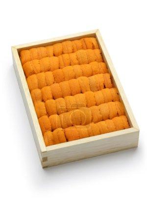 Japanese sea urchin, ego balun uni...