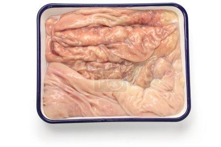 Abomasum, Labbeutel, Schilf-Kutteln, der vierte Magen einer Kuh