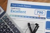 Kreditní zpráva se skóre