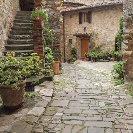 Beautiful tuscan house