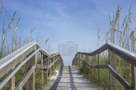 Wooden Boardwalk Path to Summer Fun