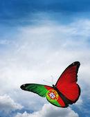 Portugalsko vlajka motýl