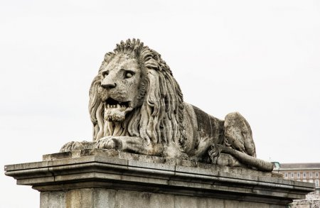 Lion stone statue in Budapest, Hungary