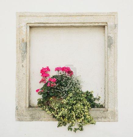 Pierres murales fenêtre avec des fleurs en pot