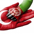Flag of Turkey overlaid the hand of an adult man h...