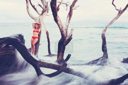 Beautiful Woman Relaxing by the Ocean
