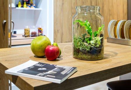 Plants in vase