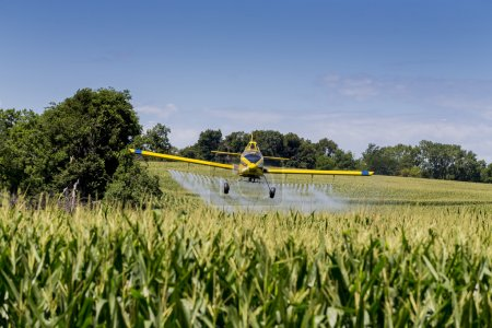 Photo for A crop duster applies chemicals to a field of vegetation. - Royalty Free Image