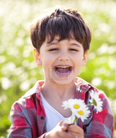 Little boy on the meadow
