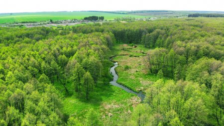 Aerial. The river flows towards the village between the green forest. Locality on the horizon. View above from drone.