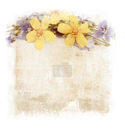 Photo pour Vignettes de fleurs sur fond vieux papier - image libre de droit
