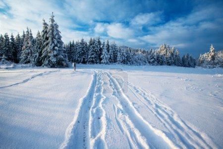 Photo pour Route d'hiver - image libre de droit