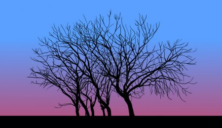 Illustration for Tree without leaves in late autumn sunset. - Royalty Free Image