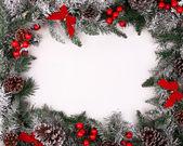 Vánoční dekorativní hranice s šišky a cesmína bobule
