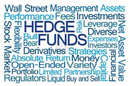 Photo pour Nuage de mot Hedge Funds sur fond blanc - image libre de droit