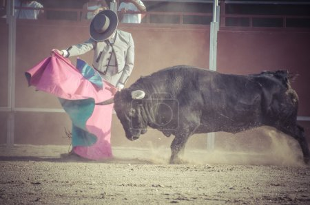 Spectacle of bullfighting