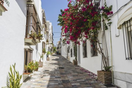 Photo for Typical Andalusian streets and balconies with flowers in Marbella Andalucia Spain - Royalty Free Image