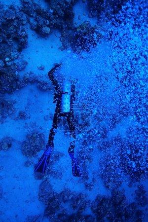 One diver underwater