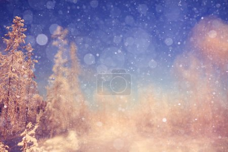 winter background  with blur forest