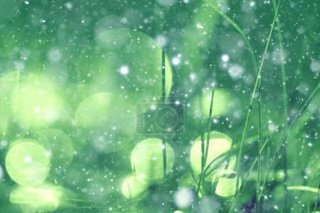 Photo pour Fond vert bokeh brouillé éblouissement pluie - image libre de droit