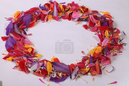 Frame of flower petals