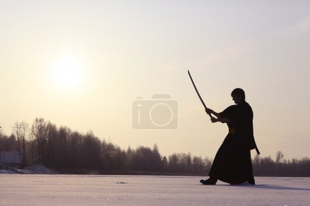 Man training martial arts