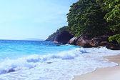Summer beach  panorama