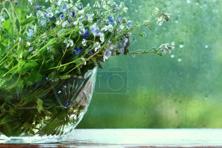 Bright colorful flowers in vase
