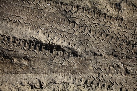 Photo for Tire tracks on the dirt protector - Royalty Free Image