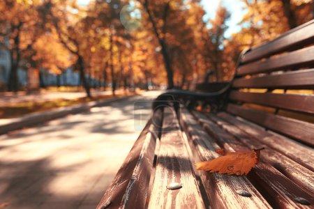 Photo for Park bench autumn urban landscape recreation - Royalty Free Image