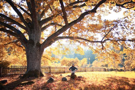 golden autumn landscape Indian summer