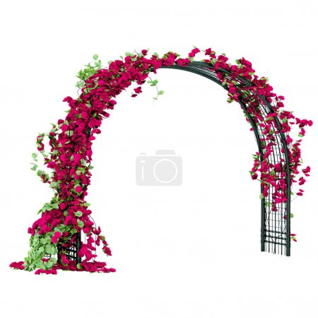 Arched pergola of black glossy metal