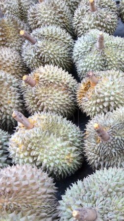 food durian close up background