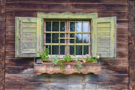 Old alpine hut - window with flowers