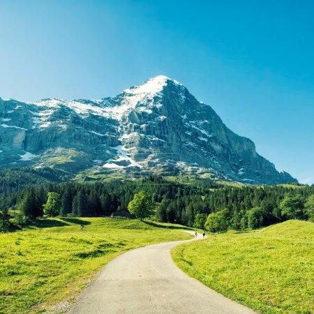 Photo pour Mur nord d'Eiger à l'heure d'été avec ciel bleu clair et prairies vertes - image libre de droit