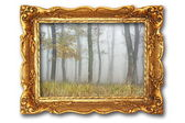 Image with misty forest on ancient picture frame
