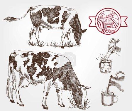 Illustration pour Élevant des vaches. ensemble de croquis réalisés à la main - image libre de droit