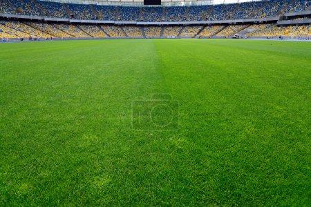 green grass on stadium