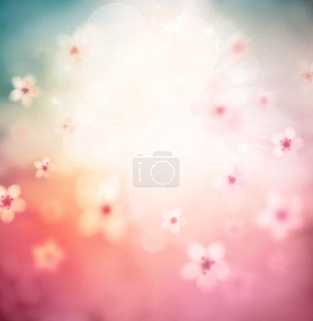 Blossoming Sacura