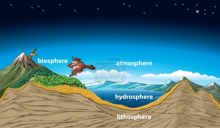 Illustration for Vector illustration of Earth's sphere: hydrosphere, lithosphere, biosphere, atmosphere. - Royalty Free Image