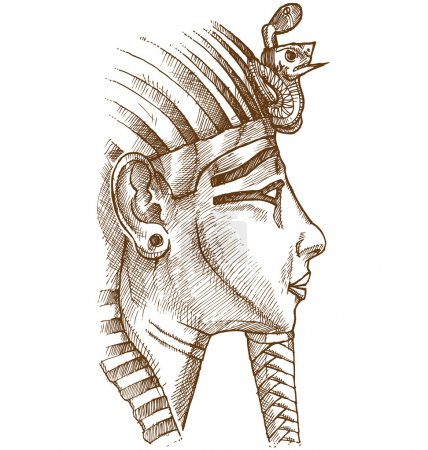 Gold tutankhamon mask hand drawn...