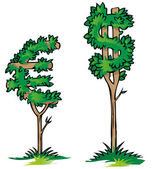 Dollar versus euro on tree isolated